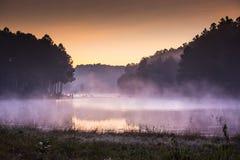 Na manhã, Pang Ung Forestry Plantations, Tailândia imagem de stock