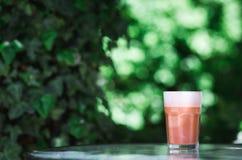 Na moda, caramelo do moderno, doce, café do chocolate Cappuccino no vidro no fundo verde das folhas Bebida do estilo da rua imagens de stock royalty free