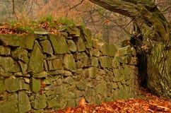 NA Moravici του Castle Hradec στοκ φωτογραφίες με δικαίωμα ελεύθερης χρήσης