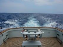 Na morzu gruba zwierzyna połów zdjęcia stock