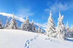 Na mroźnym dniu wśród wysokich gór i szczytów Obrazy Stock