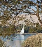Na Nil żeglowania tradycyjny felluca Fotografia Royalty Free
