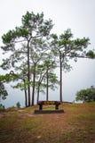 Na noi cliff at PhuKradueng national park Royalty Free Stock Images