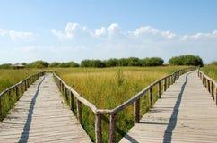 Na obszar trawiasty drewniany most Obrazy Stock