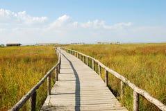 Na obszar trawiasty drewniany most Obraz Royalty Free