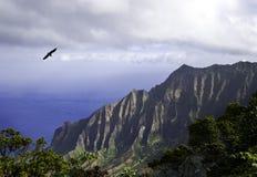 Na Pali Coast Stock Images