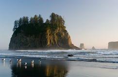 na plażę po drugie zdjęcie royalty free