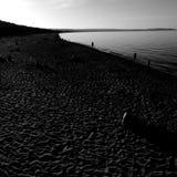 Na plaży Artystyczny spojrzenie w czarny i biały Zdjęcia Royalty Free