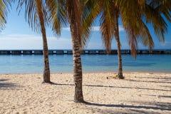 Na plażowym Playa Giron, Kuba Obrazy Stock