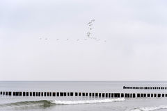Na plaży Ahrenshoop Obrazy Stock