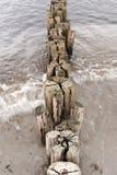 Na plaży Ahrenshoop Zdjęcia Royalty Free