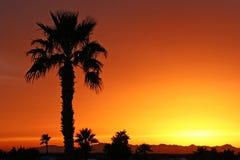 na południowy zachód słońca Zdjęcia Royalty Free