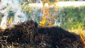 Na pożarniczym abstrakcie fotografia royalty free