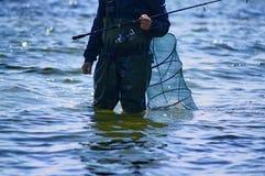 Na polowaniu dla ryba fotografia stock
