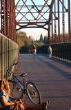 Na ponte Imagens de Stock Royalty Free