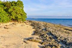 Na praia da ilha da recompensa em Fiji fotografia de stock royalty free