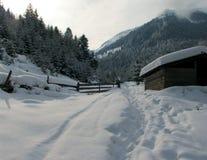 Na profundidade de inverno Fotografia de Stock Royalty Free