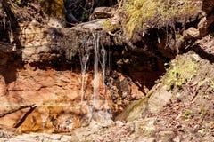 Na rocha de uma caverna velha fotografia de stock royalty free
