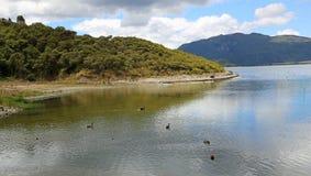 Na Rotomahana jeziorze Zdjęcie Stock