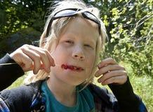 Na słomie dzikie truskawki Fotografia Royalty Free