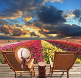Na sala de estar do chaise o chapéu de palha pendura Fotografia de Stock
