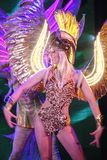 Na scenie w spektakularnym przedstawieniu Najważniejszym muzykalny theatre Zdjęcia Royalty Free