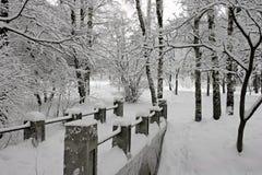 Na sneeuwstorm. stock afbeeldingen