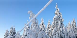 Na sneeuwval royalty-vrije stock foto's