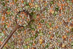 NA SOPA OUTRA VEZ 02 fotografia de stock royalty free