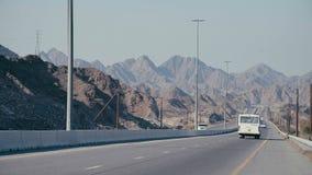 Na sposobie pustynia Droga między drzewkami palmowymi zdjęcie wideo