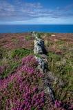 Na sposobie Zennor w Cornwall uk Anglia Obraz Royalty Free