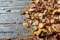 Na starych drewnianych desek kłamstwach stos spadać jesień liście zdjęcia royalty free