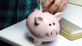 Na stole tam być prosiątka bank w postaci różowej świni i kiesy Mężczyzna pcha papierowego rachunek w prosiątko banka pi i zbiory wideo