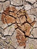 Na suchej ziemi Afryka profil Fotografia Stock