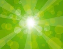 Na Tło Zielonej Ilustraci słońce Promienie Obrazy Royalty Free