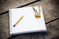 Na tabela há um caderno, um lápis e coltsfoot amarelo das flores foto de stock royalty free