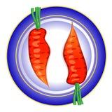 Na talerzu dwa surowej marchewki. Obraz Royalty Free
