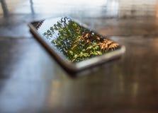 Na tela esperta clara do telefone do foco que espelha a reflexão do fundo imagem de stock