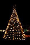 na terenach odkrytych świąteczne lampki do drzewa Fotografia Stock