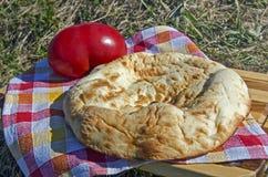 na terenach odkrytych piknik Zdjęcie Royalty Free