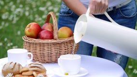Na tle chamomile gazon, kobiety ` s ręki nalewają herbaty od białego dzbanka w białą filiżankę, termos butelka Na zbiory