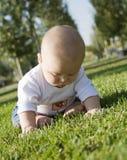 Na trawy bawić się dziecka obsiadanie Obrazy Stock