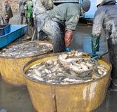 Na uit visserij Stock Foto's