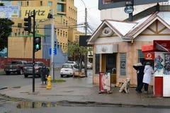 Na ulicie Punta Arenas Zdjęcia Royalty Free