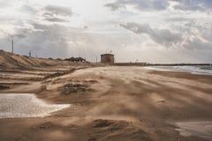 Na wybrzeżu silny wiatr dmucha z piaskiem przeciw tłu obraz stock