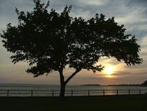 na zachód słońca Zdjęcia Royalty Free