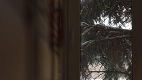 na zewnątrz śnieżnego okno
