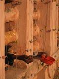 na zewnątrz świątyni żebraków ind Obraz Stock