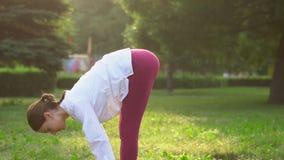 na zewnątrz zrobić kobiety jogi zbiory wideo