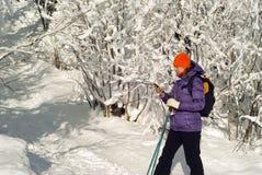 Na zima spacerze w komunikaci Fotografia Stock